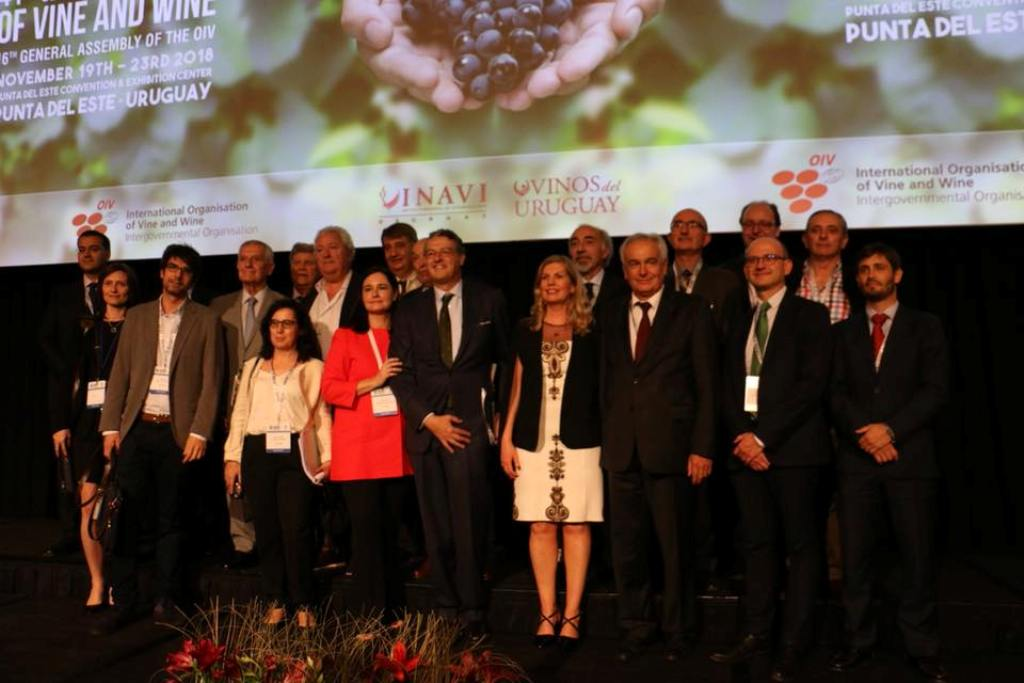 Pau Roca, el primer español elegido director general de la Organización Internacional de la Viña y el Vino