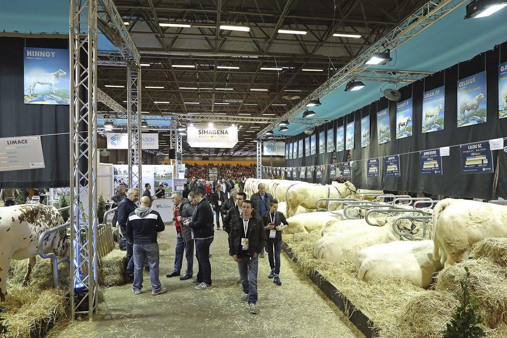 SIMA 2019 presenta una nueva jornada de ganadería