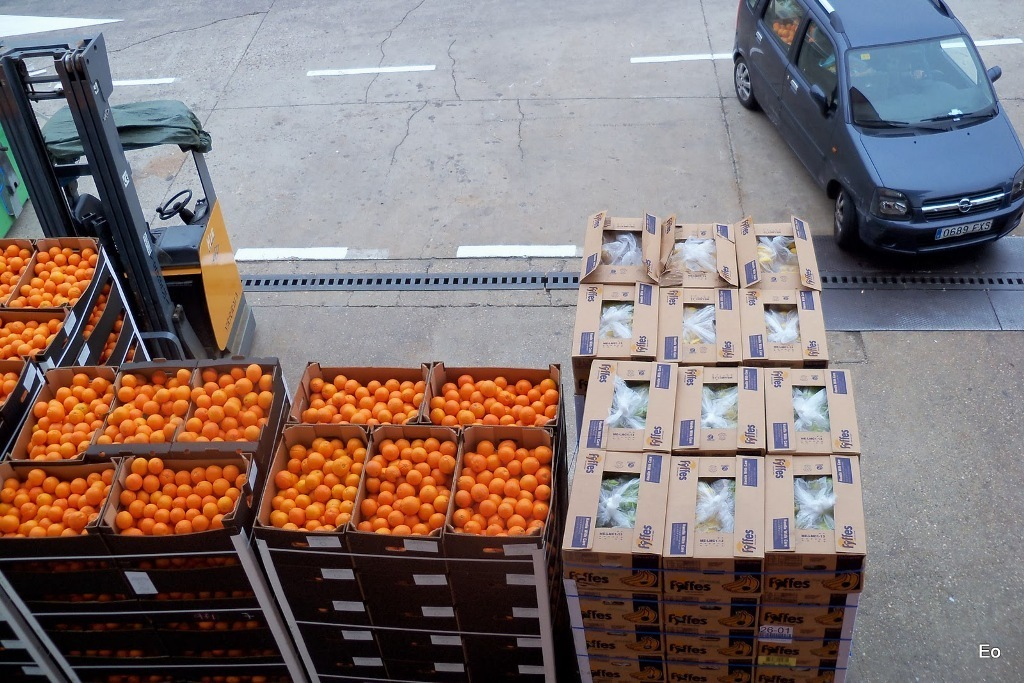 Asignadas solicitudes para retirar más de 7.205 t de cítricos con destino a zumo de distribución gratuita