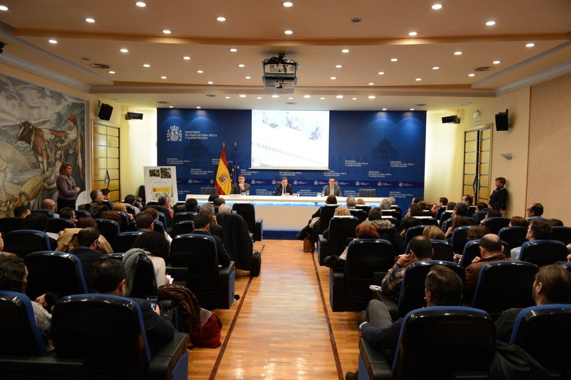 El MAPA ha destinado casi 4,5 M€ a la vigilancia y erradicación de la Xylella fastidiosa