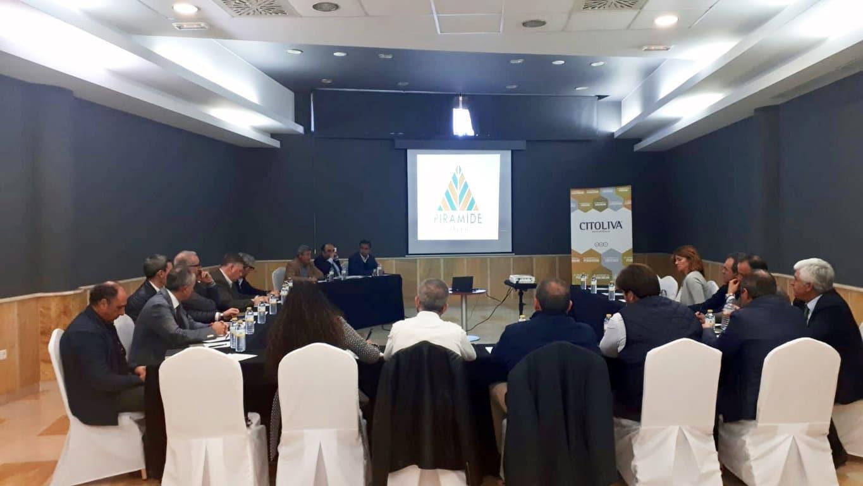 Citoliva impulsa la inversión de la industria oleícola española en Egipto