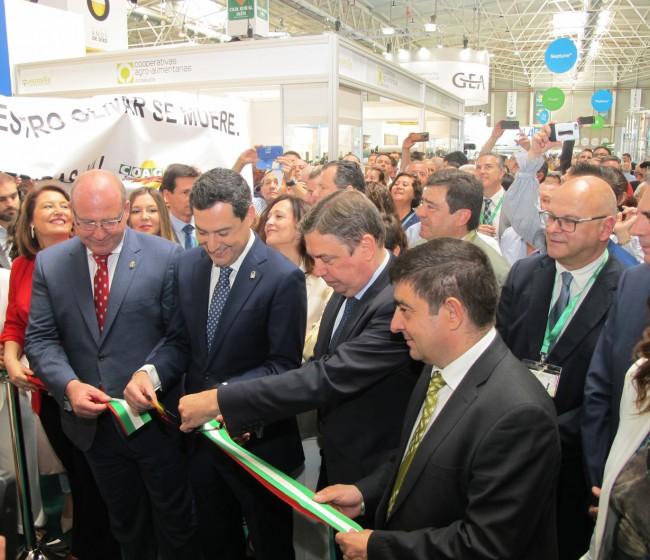 Expoliva cifra en más de 600 millones de euros el volumen de negocio generado su última edición