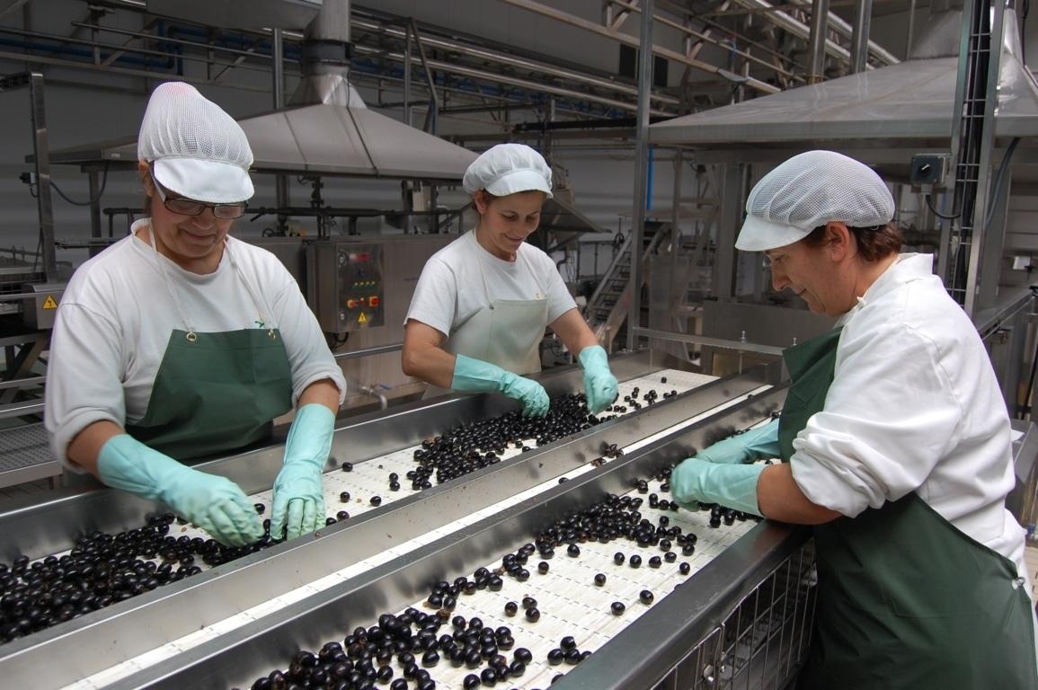 La UE pide a la OMC un panel sobre el alza de aranceles USA a la aceituna negra española