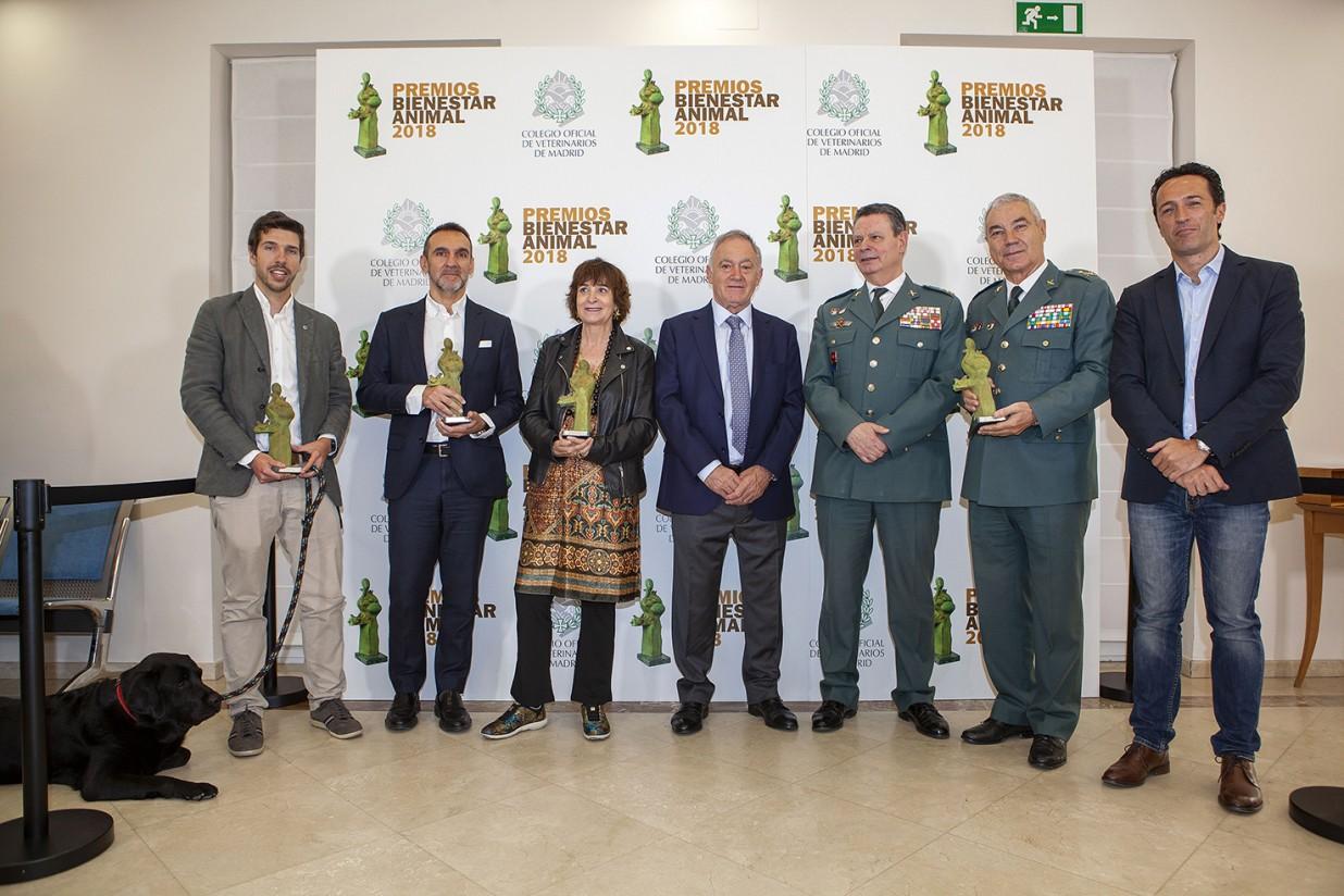 El Colvema entrega los Premios Bienestar Animal en su cuarta edición