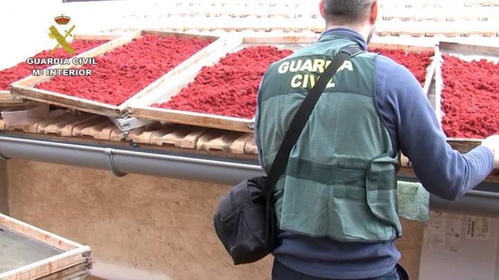 Operación OPSON VIII: La Guardia Civil incauta 300 t y 39.000 litros de alimentos y bebidas falsificadas