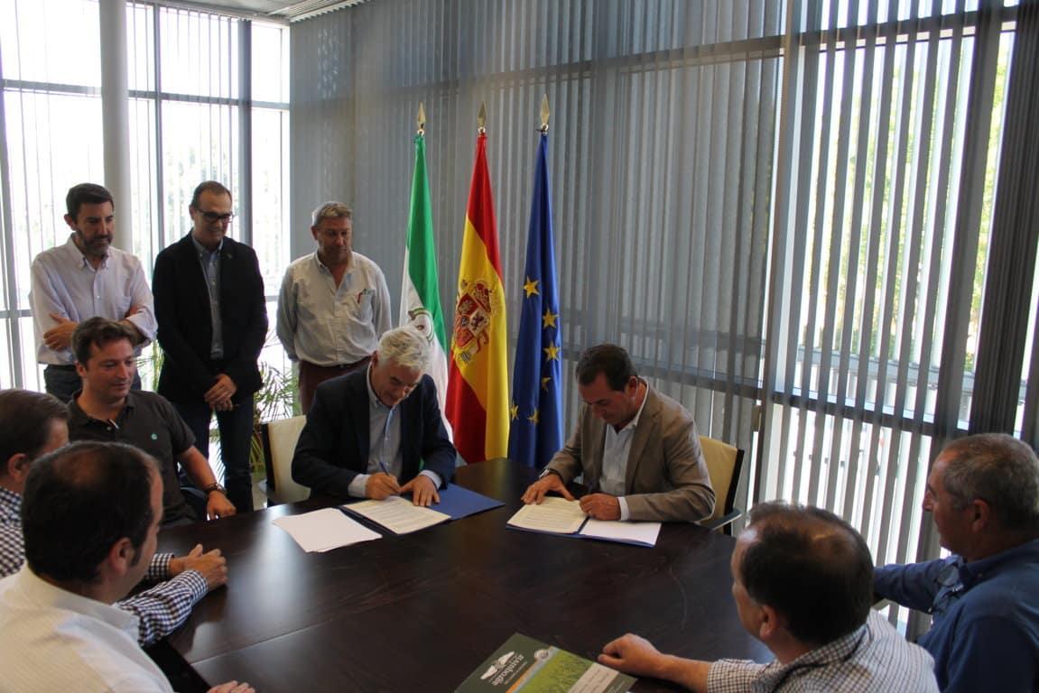 Acuerdo Cooperativas, IFAPA y Coalsa para impulsar la investigación en el cultivo del  algodón en Andalucía