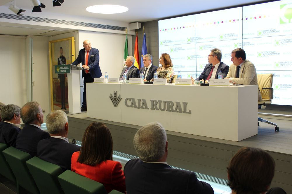 Continuidad al frente de Cooperativas Agro-alimentarias de Andalucía