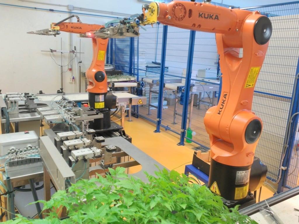 La producción alimentaria tendrá que aumentar en un 70% para hacer frente a la demanda creciente de alimentos en 2050