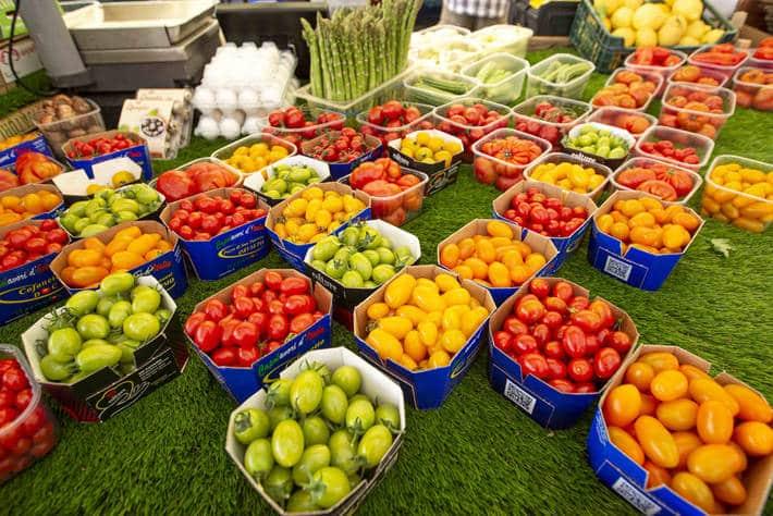 El alza de la producción agrícola mundial mantendrá bajos los precios de los alimentos en 2019-2028