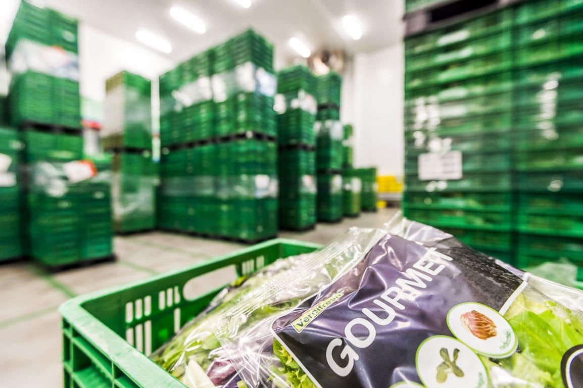 FEPEX alerta que las altas temperaturas provocan tensiones en el suministro de las hortalizas de IV Gama