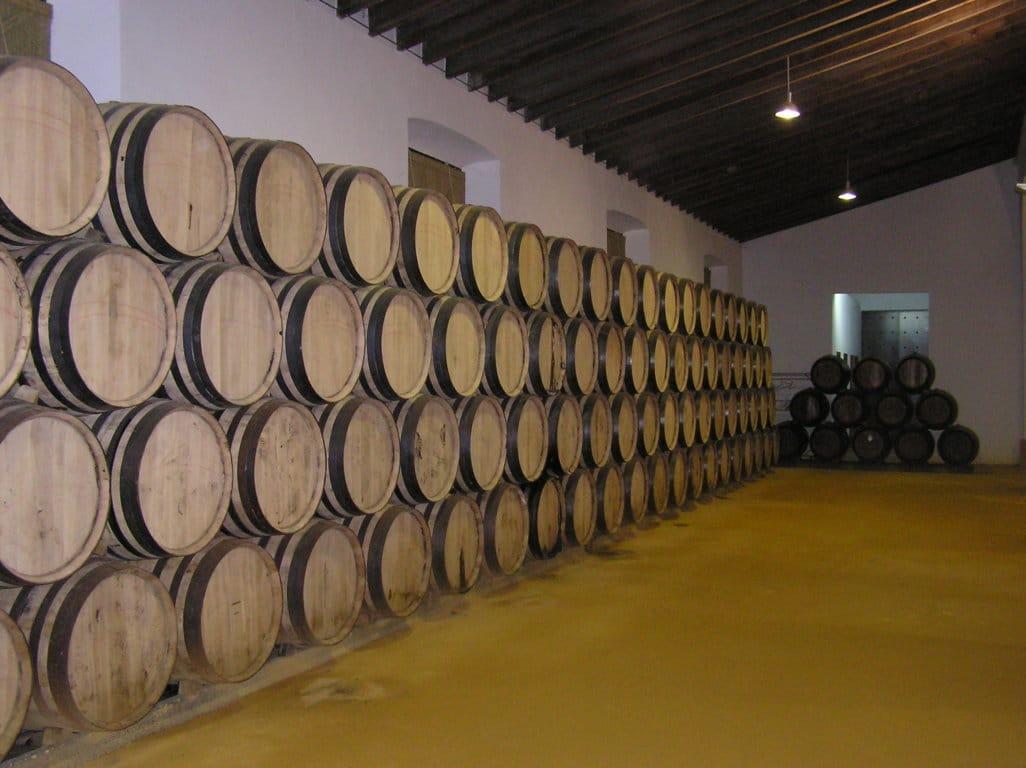 La campaña vitivinícola 2018/19 acabó con 38,85 Mhl de existencias almacenadas de vino y mosto