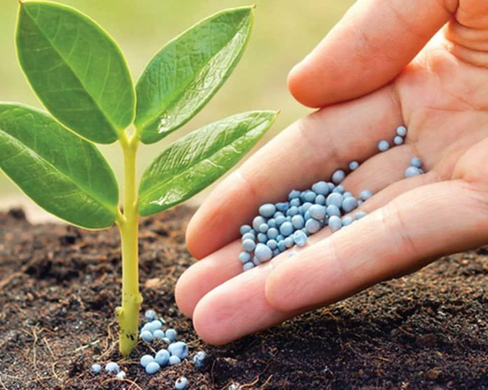 Actualizada la normativa sobre indicadores de riesgo en el uso sostenible de productos fitosanitarios
