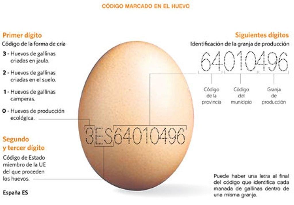 Singapur abre su mercado interno a la importación de huevos españoles