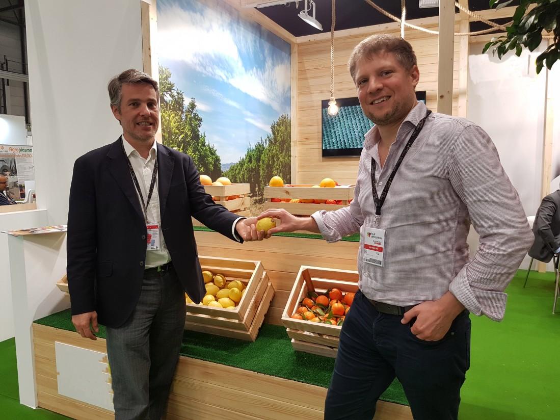 Consentio, la nueva plataforma digital para comercializar frutas y hortalizas