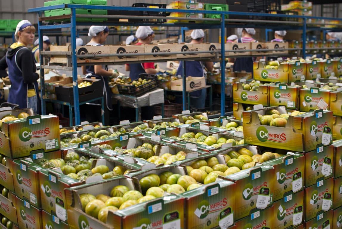 Andalucía marca un récord histórico en exportaciones agroalimentarias