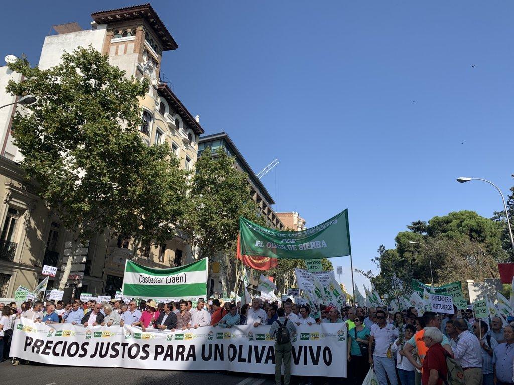 Miles de olivareros se manifiestan en Madrid por unos «Precios justos para un olivar vivo»