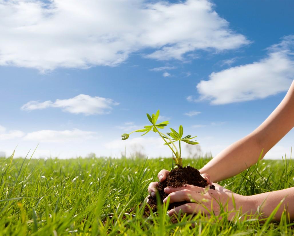 De Heus apuesta por la sostenibilidad en sus sistemas de producción