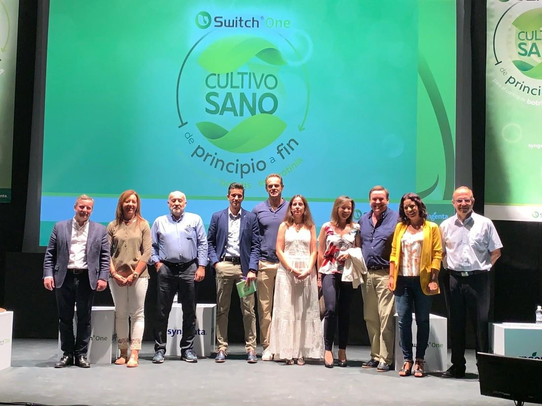 Syngenta lanza Switch One para el control de botritis y esclerotinia en hortícolas