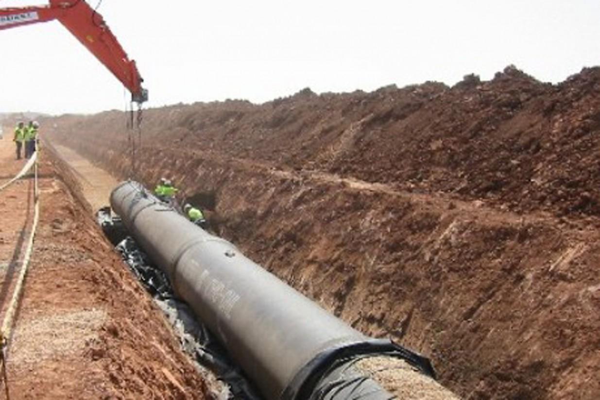 Parques Nacionales de Castilla-La Mancha pide trasvasar 20 Hm3 de agua del Tajo a las Tablas de Daimiel