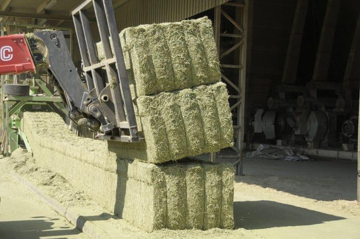 AEFA confirma el buen comportamiento de las exportaciones de alfalfa deshidratada en agosto