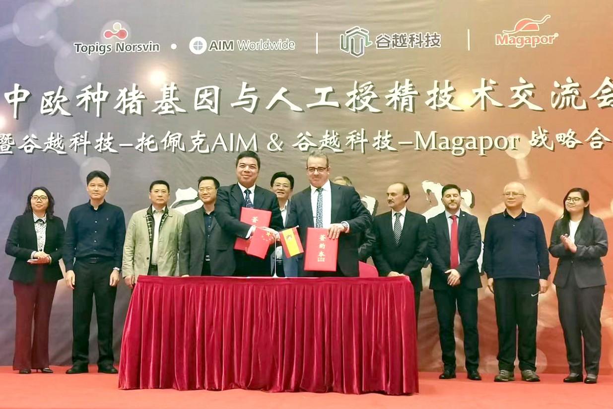 Magapor y Guyue firman un acuerdo para crear el mayor centro de reproducción porcina de China