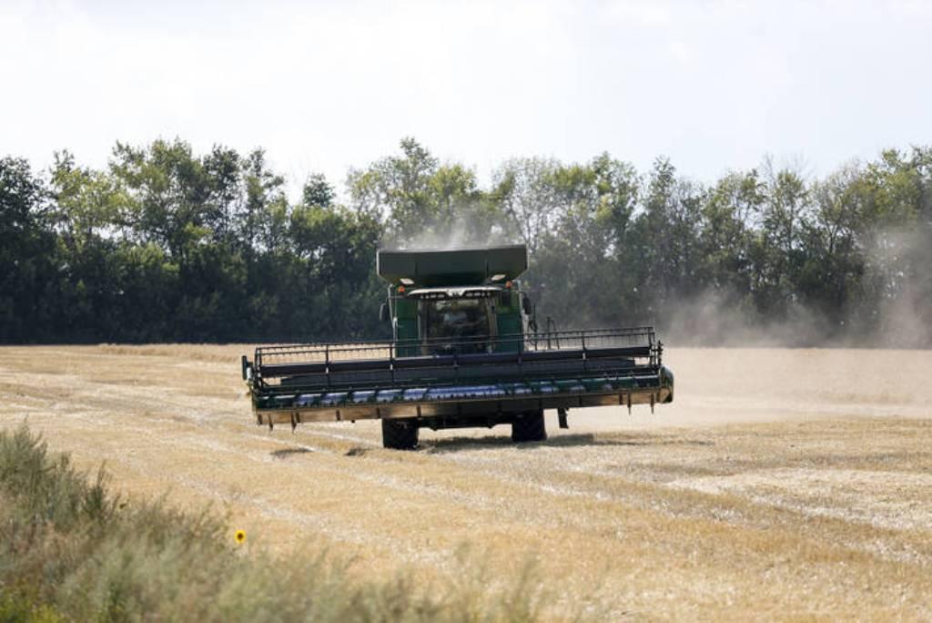 El índice de precios de los alimentos básicos de la FAO sube por vez primera desde mayo pasado