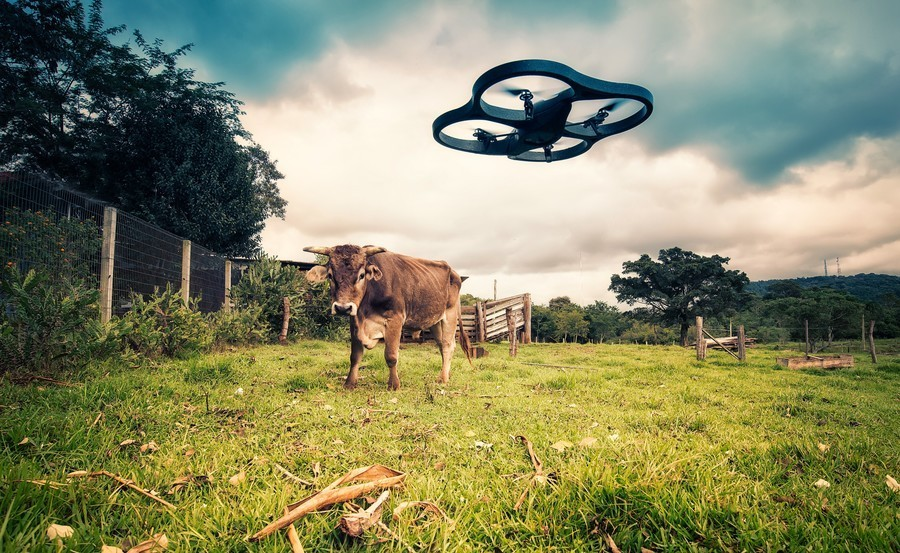 Atitlan lanza «Future Farming» para emprender proyectos de agricultura «regenerativa» en la Península