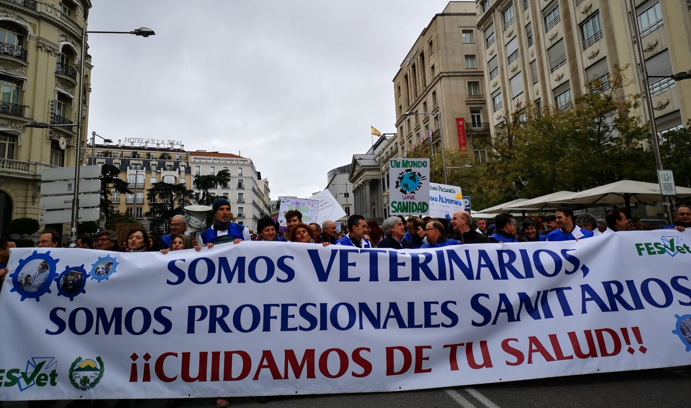 Más de 3.000 veterinarios de toda España exigen su integración en el Sistema Nacional de Salud