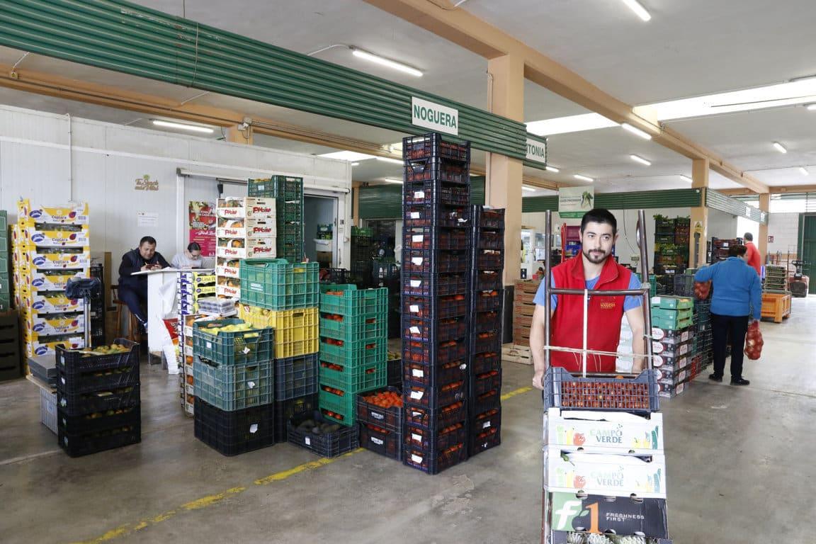 La Red de Mercas comercializó un 13% más de alimentos en el pasado año