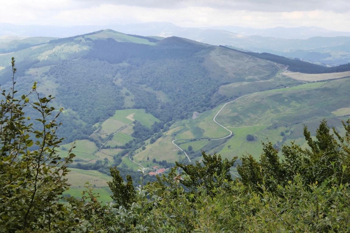 Las competencias en política forestal se trasladan del MAPA al nuevo Miteco+Reto Demográfico