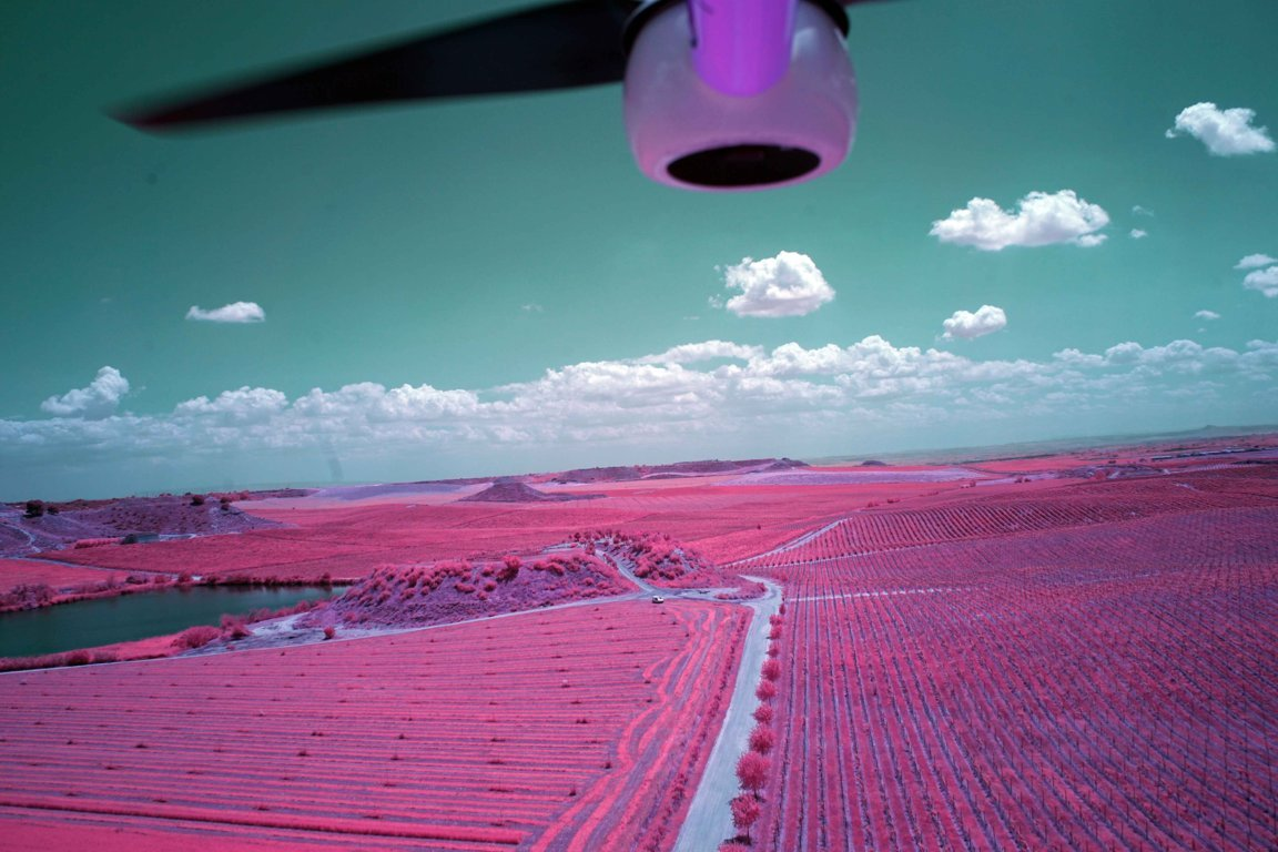 Por un mayor uso de las TIC para supervisar los requisitos agro-ambientales y climáticos de la PAC