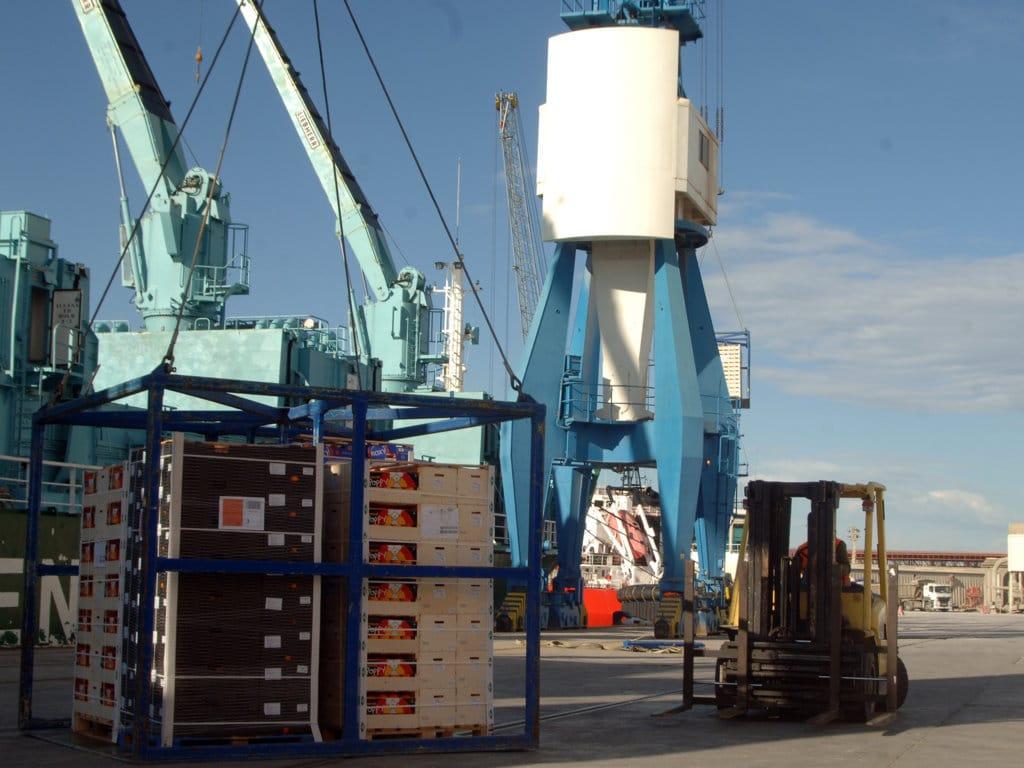 AVA-ASAJA denuncia la incoherencia de la CE por incentivar importaciones que sustituyen la producción citrícola europea