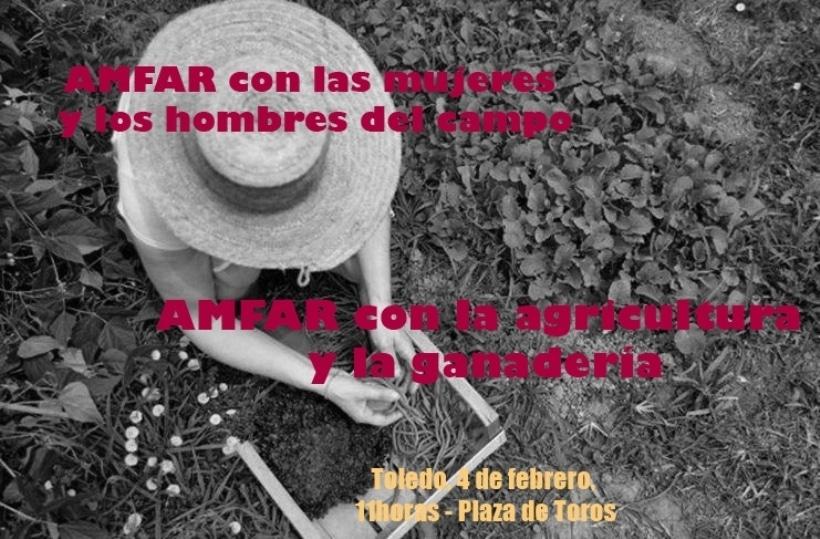 Las organizaciones agrarias castellano-manchegas se manifestarán mañana en Toledo