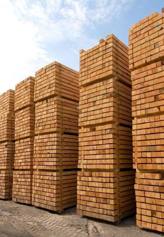 La madera de las subastas públicas generó en España 112 millones de euros en 2019