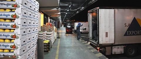 El sector hortofrutícola reclama a la CE que facilite el transporte por carretera