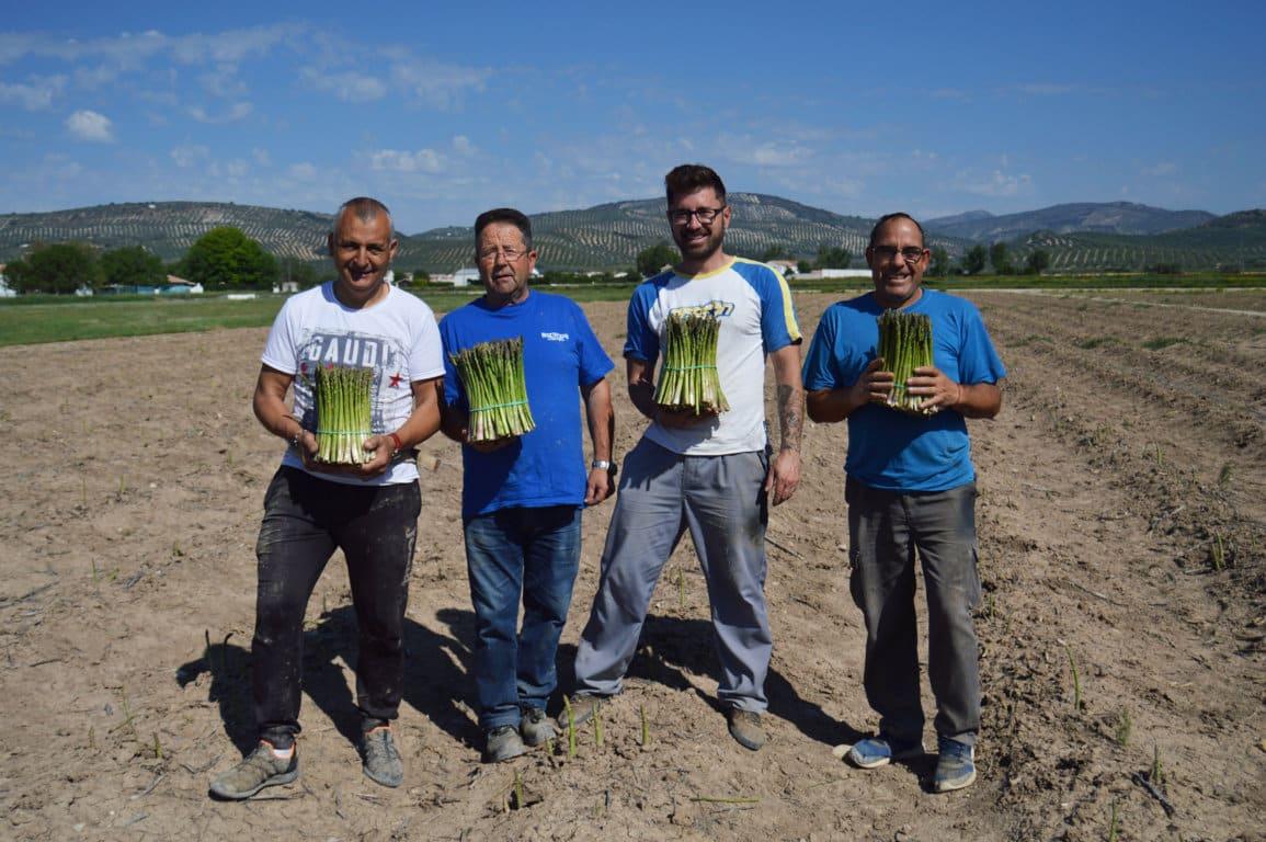 La cadena alimentaria europea pide reconocer el compromiso esencial de la actividad de sus trabajadores