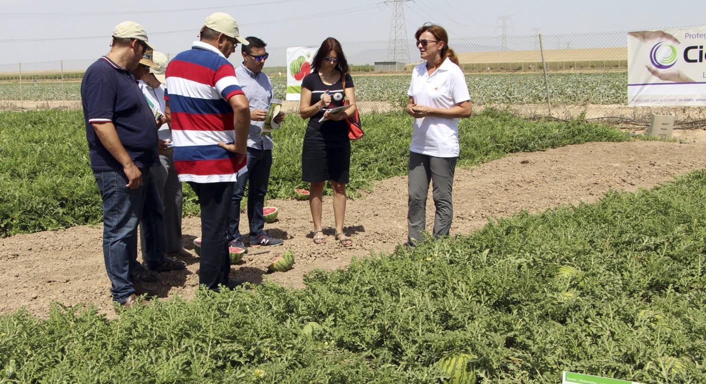 El sector agrario es donde menos cobran las mujeres, según los técnicos de Hacienda