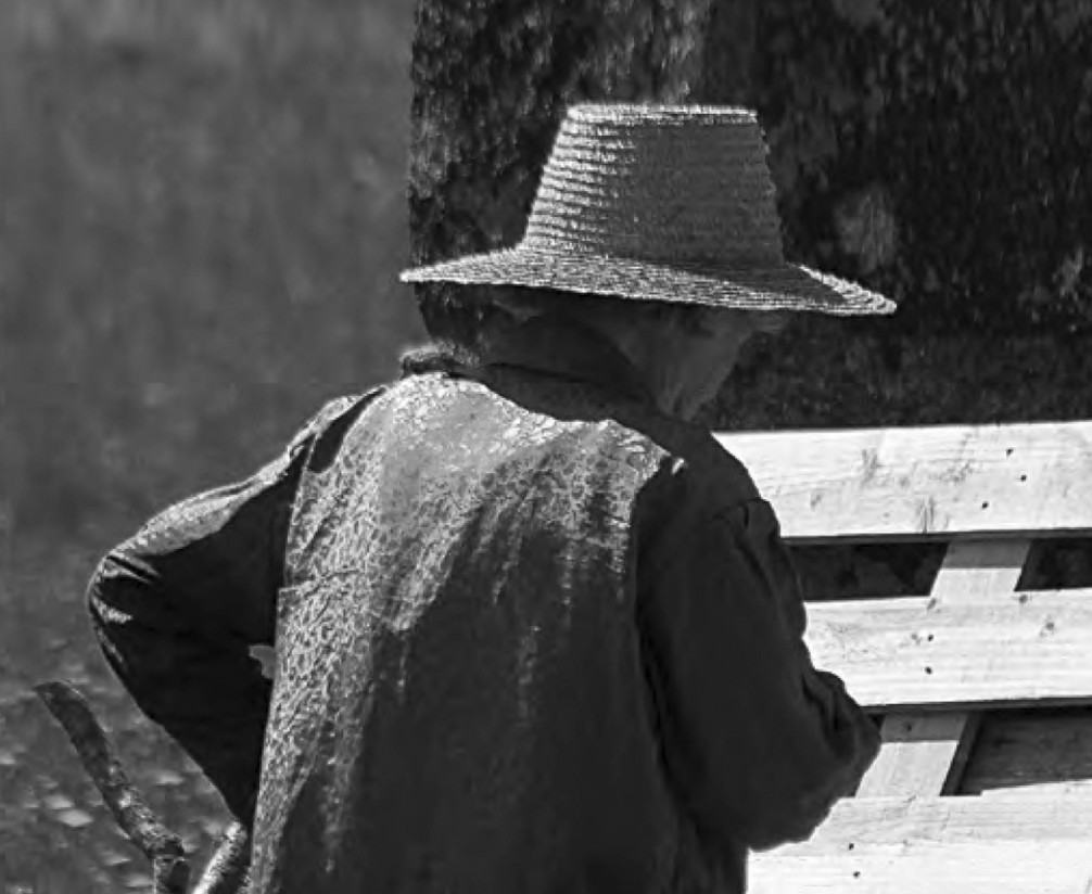 Estudio COAG: 7.213 mujeres se han sumado al sector agrario como jefas de explotación