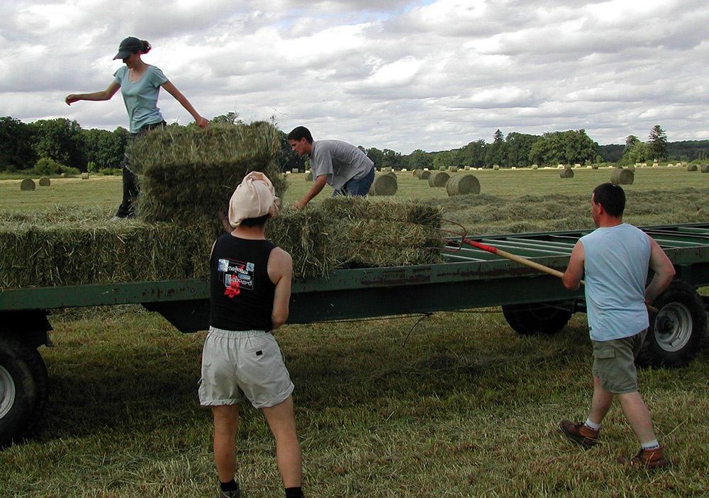 ASAJA y COAG critican el uso que hace Trabajo de los fondos de empleo agrario al vincularlos con el Covid-19