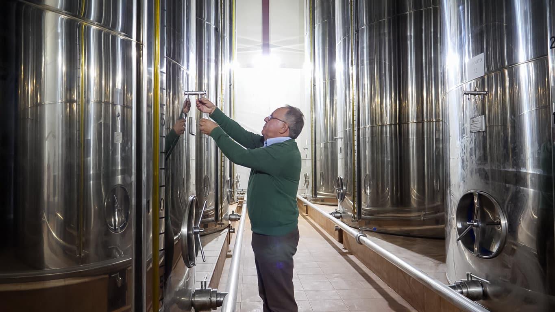 Covid-19: El confinamiento elevó las salidas al mercado de aceite de oliva hasta 141.000 t en marzo