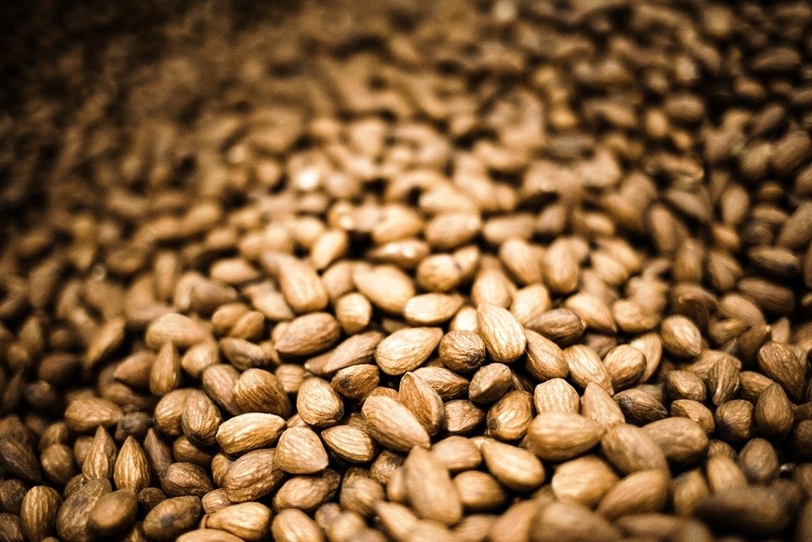 El cultivo del almendro en España se acerca a las 700.000 hectáreas y la producción de avellana crece un 50%