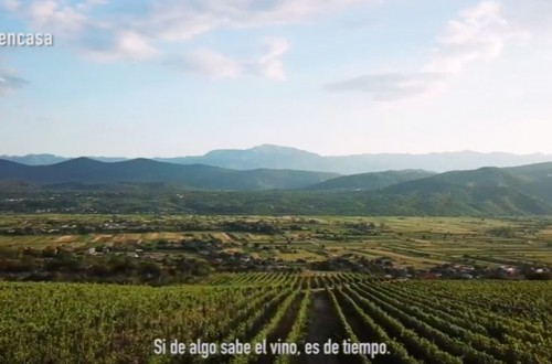 Si de algo sabe el vino es… de tiempo