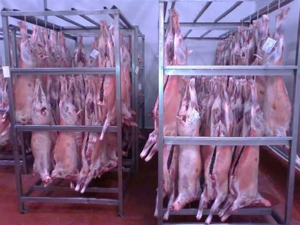 El ovino español abre con 20 t la puerta de la solicitud de almacenamiento privado de este tipo de carne en la UE