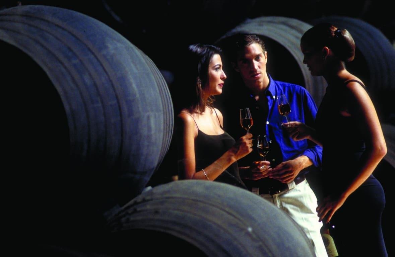 Estudio OIVE: el consumo de vino gana terreno en canales cada vez más complejos y diversificados