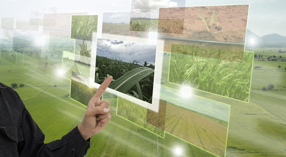 Más de un millón de hectáreas de regadío utilizan ya sistemas de telecontrol