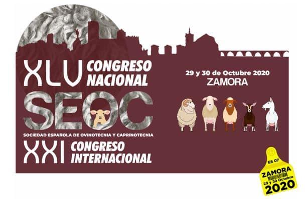 SEOC sigue preparando el XLV Congreso Nacional y XXI Internacional