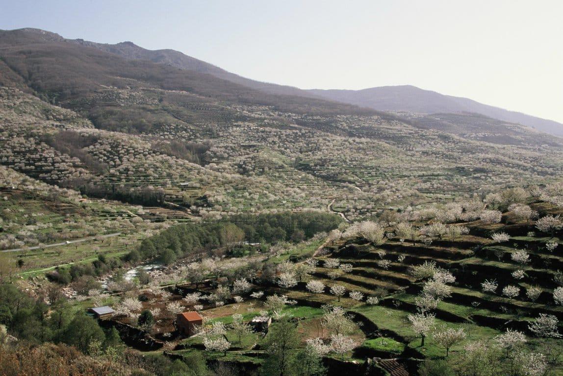 ¿Cómo incidirá en el sector agrario y el medio rural la Estrategia «Biodiversidad Horizonte 2030»?