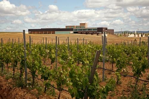 Apoyo de la Comagri a las reivindicaciones del sector vitivinícola español