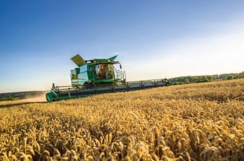 Hacia dónde se dirigen las mejoras tecnológicas en cosechadoras de cereales