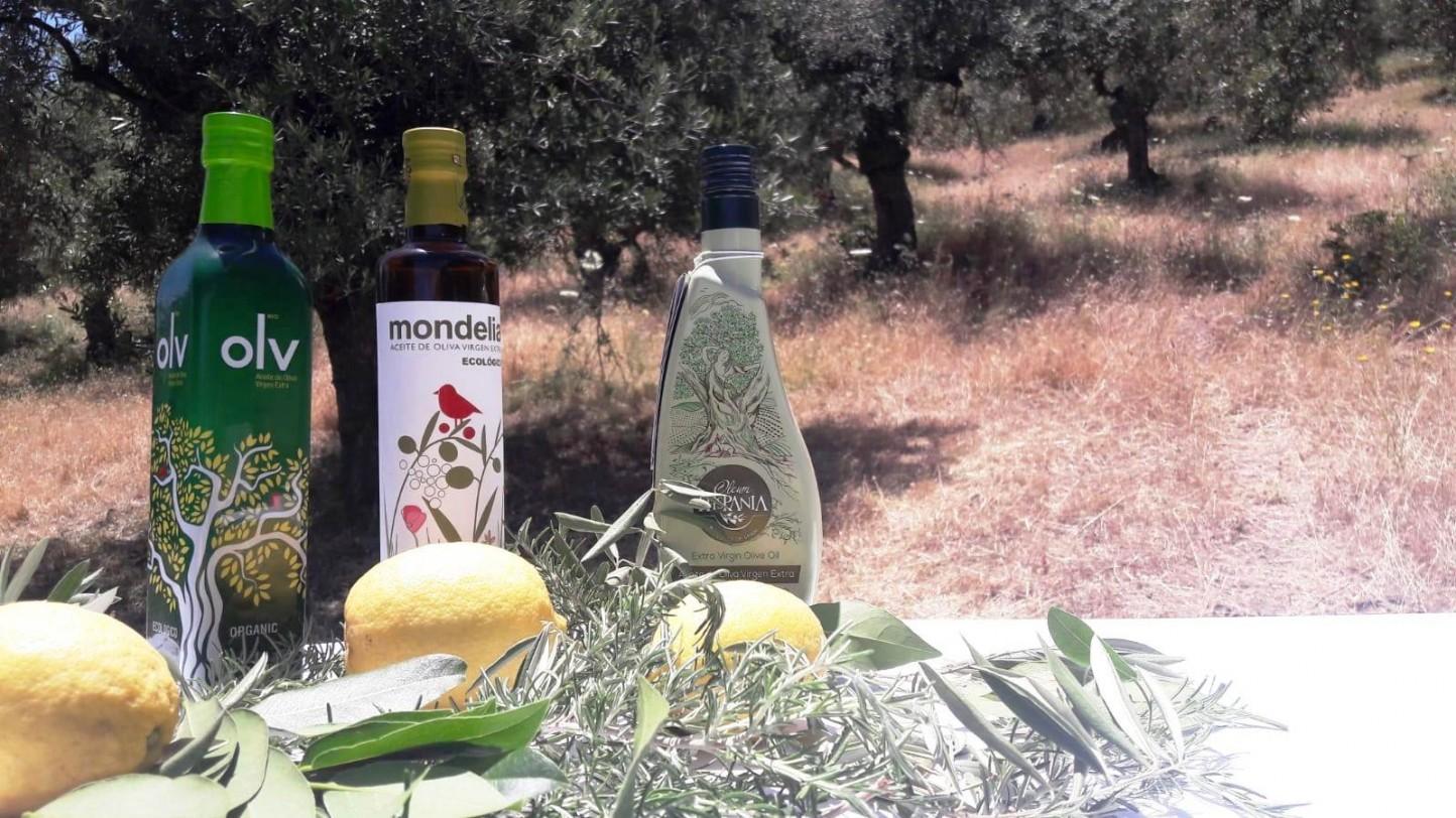 El aceite ecológico Mondelia de Hacienda Bolonia, premio especial Ecotrama 2020